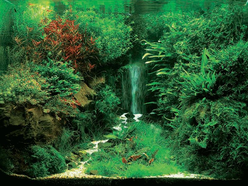 Водопад своими руками аквариум фото